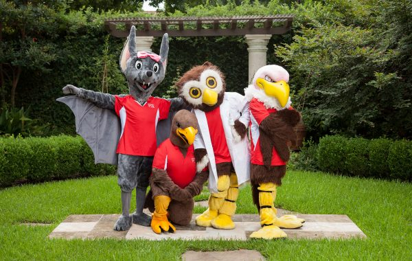 Literacy Tours: Avian Mascots